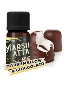 Vaporart - Aroma MARSH...